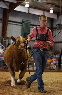 Senior Rylan Rutledge struts his stuff at the Hendricks County Fair.